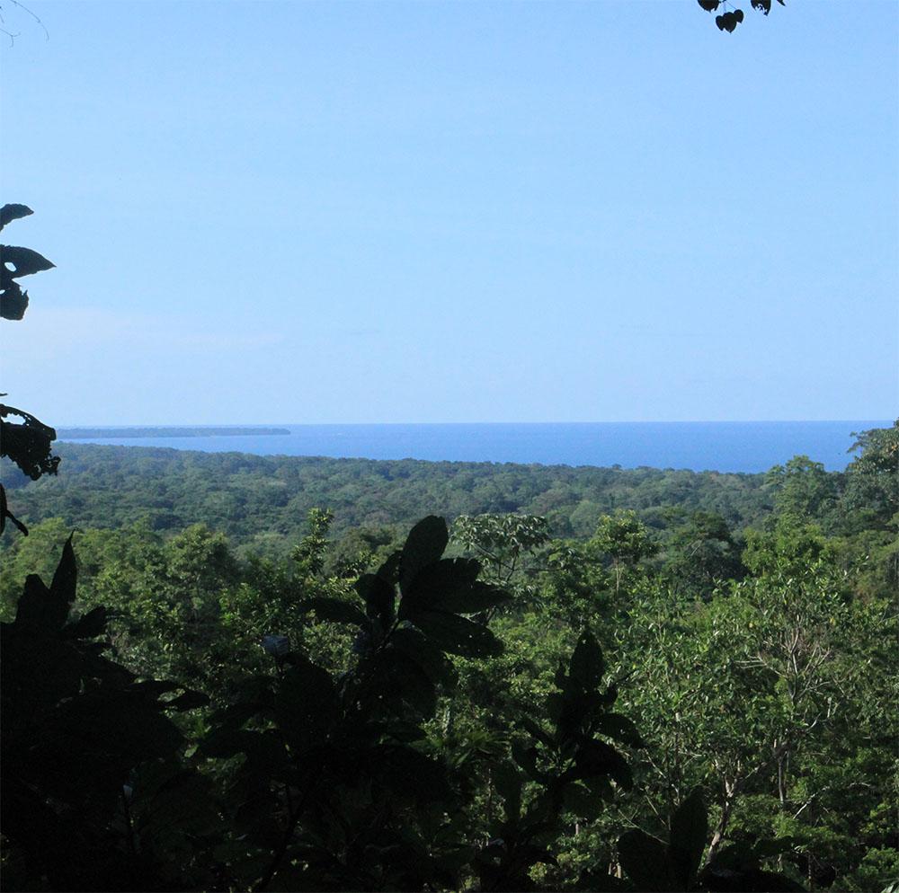 Views from Kekoldi
